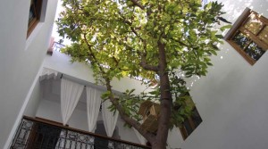 Good deal! 6 bedrooms guest house riad, all authorisations