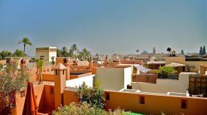 Riad RHINOCEROS, exclusive rent, experience the medina of Marrakech …